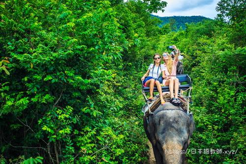 ゾウに乗って観光